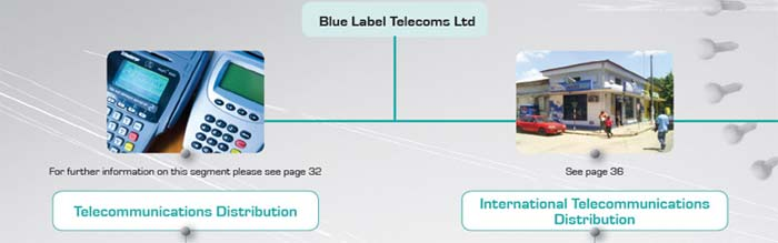 Blue Label Telecoms Annual Report 2008 - group structure